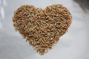 rice heart