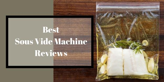 best sous vide machine reviews